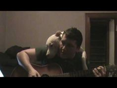 I Dare You Tell Me Pit Bulls Are Evil After Watching What Happens Here!