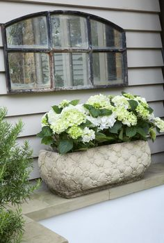 Lovely window box w/ hydrangeas. Garden Mirrors, Garden Windows, Balcony Garden, Garden Pots, Container Plants, Container Gardening, Beautiful Gardens, Beautiful Flowers, Hortensia Hydrangea