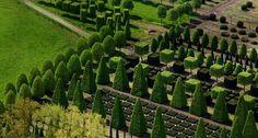 aerial_shot_nursery_garden_geometrically_pruned_trees_leer_germany_20120213.jpg (958×512)