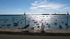 Cadiz.España