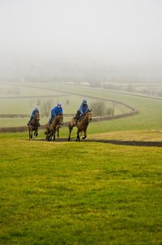 Cantering on the Downs Life Magazine, Countryside, England, Community, River, Mountains, Landscape, Scenery, English