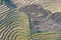 Sculpted Landscape: Rice Fields in Timor-Leste