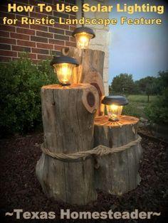 How to Make A Rustic Cedar Solar Light Feature Rustic landscaping, Diy garden decor, Solar Rustic lighting ideas, rustic outdoor lighting . Garden Crafts, Diy Garden Decor, Garden Projects, Log Projects, Garden Art, Cedar Log, Cedar Trees, Landscape Lighting, Outdoor Lighting