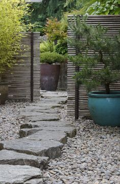 Small japanese garden style Courtyard with clever use of screens to add privacy and depth #japanesegardens