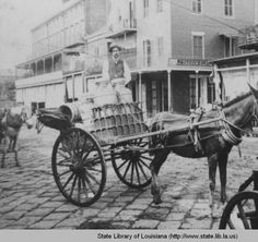 Milk wagon on Decatur Street in New Orleans Louisiana in the 1880s :: State Library of Louisiana Historic Photograph Collection