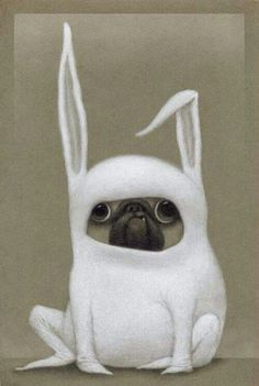 Puggy bunny hhahaha