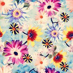 Floral Print Textile