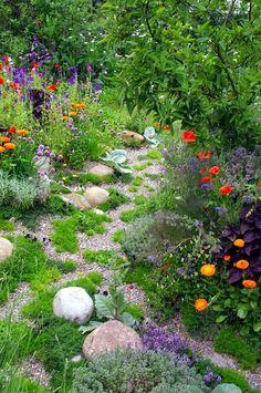 """Немного иллюстраций с Pinterest: Похожего эффекта можно добиться, купив """"цветущий газон"""". Большинство растений в наших широтах не зимует (и не все выживает при самосеве), но у многих можно собирать семена и повторять. Очень нравятся однородные массивы: Уютные садики. Атмосфера…"""