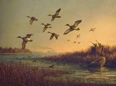 Eastern Shore Mallards by Paul McGehee traditional artwork Waterfowl Hunting, Duck Hunting, Delmarva Peninsula, Hunt Valley, Traditional Artwork, Water Life, Chesapeake Bay, Mallard, Ocean City