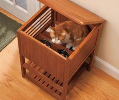 Dog and Cat Feeding Station | Tiered Cat Feeding Station lets your cat eat at ease » Pets Clan
