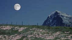 April's Full Pink Moon~   Learn the origin behind the name for April's Full Moon along with some other lesser-known names in this month's installment of Full Moon Names from Farmers' Almanac.