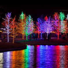 Light up your porch, garden, or pier using these inspired examples Christmas Light Show, Christmas Yard, Outdoor Christmas, Christmas Tree Decorations, Xmas, Christmas Lights Wallpaper, Christmas Aesthetic, Holiday Lights, Christmas Pictures