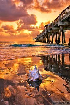 ☀ Golden Caramel Sunrise over Juno Beach Pier, Florida