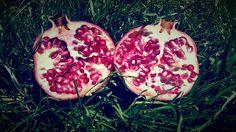 Granada, Frutas, Naturaleza