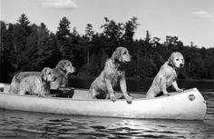Members of the Camp Longwood canoe club on Bear Pond.