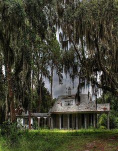 House by the swamp in Louisiana.