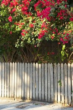 Privacy Fence Ideas - How To Build A Privacy Fence
