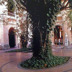Courtyard at La Universidad de la Habana
