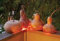 How-to-Dry-or-Cure-Gourds-2.jpg 800×557 pixels
