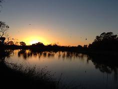 Sunrise at Mungarannie (on the Birdsville Track) Outback South Australia South Australia, Western Australia, Fresh Water, Wilderness, Touring, Remote, Sunrise, Landscapes, Wildlife