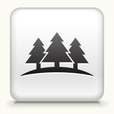 Royalty free vector icon button with Three Trees vector art illustration
