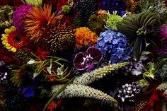 Midnight Garden, The Darkest, Wreaths, Halloween, Plants, Home Decor, Decoration Home, Door Wreaths, Room Decor