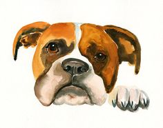 CUSTOM PET PORTRAIT  Original watercolor painting by dimdi on Etsy, $38.00