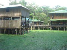 Amacayacu.  Amazonas, Colombia.  GloriaG.