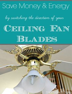 Ceiling fan direction tips n tricks pinterest ceiling fan change ceiling fan direction in winter summer and save money and energy aloadofball Choice Image
