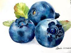 The 15 Best Fat-Burning Foods Watercolor Fruit, Fruit Painting, Watercolour Painting, Watercolor Flowers, Botanical Drawings, Botanical Illustration, Watercolor Illustration, Color Pencil Art, Fruit Art