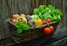 Tips for having the best nutrition and improve your health. Eat raw vegetables and lots of fruits. Avoid processed food and sugar. Thanksgiving Vegetables, Organic Vegetables, Fruits And Vegetables, Growing Vegetables, Healthy Vegetables, Colorful Vegetables, Happy Thanksgiving, Growing Plants, Store Vegetables