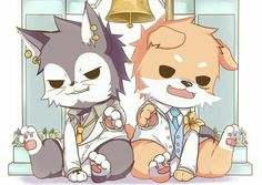 Law, Luffy, cute, dog, wolf, cat, neko, bell, suits, outfits; One Piece