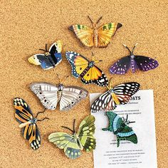 Hand Painted Butterfly Pushpins, Set of 9
