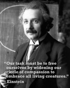 Einstein was an animal lover! If he knows what's up, shouldn't everyone? Get more inspirational animal rights quotes here: http://www.peta2.com/blog/famous-animal-rights-quotes/: