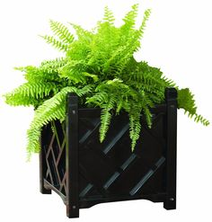 Amazon.com : DMC Products Chippendale 18-Inch Square Solid Wood Planter, Black : Wooden Planter Black Square : Patio, Lawn & Garden