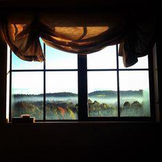 From my window. Desde mi ventana. #lavueltaalmundosinprisas #aroundtheworldunhurried #lavueltaalmundo #aroundtheworld #paisaje #landscape #hunua #papakura #auckland #nuevazelanda #newzealand #voluntario #volunteer #voluntariado #volunteering #viajero #traveler #viaje #travel #trip #journey