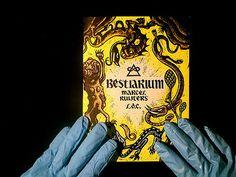 bestiarium / marcel ruijters on Flickr - Photo Sharing!