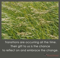 Transitions are occurring all the time. Their gift to us is the chance to reflect on and embrace the change.
