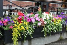 I Love The Colors In This Black Window Box Filled With Flowers!
