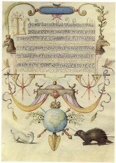 Georg Bocskay and Joris Hoefnagel - Magestas - Category:Joris Hoefnagel - Wikimedia Commons Medieval Manuscript, Medieval Art, Illuminated Manuscript, Illustrations, Illustration Art, Silverpoint, Decoupage, Magnum Opus, Floral Drawing