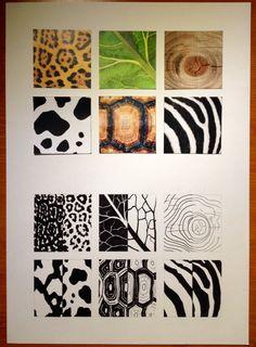 6 Texturas
