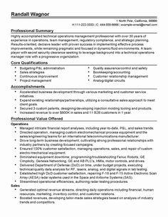 professional resume pdf professional skills summary resume in ...