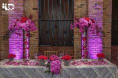 Palm Door on Sixth. Pink uplighting. Pinspotting. Lighting by Intelligent Lighting Design. Rentals by Loot Vintage & Premiere Select. Florals by Bird Dog Wedding. Photos by Jerry Hayes Photography.