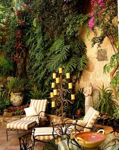 notice the plants trained on the walls.  They make this small space look very lush and inviting......