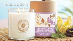 PartyLite Brighter World Candles - Contact me today and visit my website to enroll in my Preferred Membership for FREE! Best Candles, Pillar Candles, Candle Jars, Website Sign Up, Earth Hour, Candle Accessories, Glass Jars, Coupon Codes, Candles
