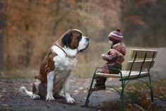 Little Kids and their Big Dogs - Andy Seliverstoff's photography