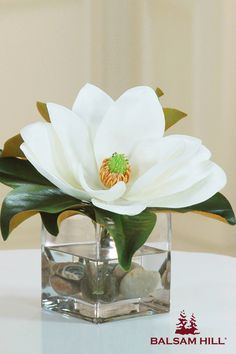 Breathe life into any room with this magnolia, timelessly kept in an illusion of water.  This simple yet graceful centerpiece from Balsam Hill would be an elegant gift for any mom. #MothersDay