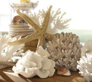 Faux Shell Accessories from Pottery Barn - Create a Beach Style vignette while being environmentally responsible not to be harming our oceans coral reefs...