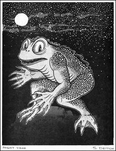 Night Toad by Simon Deitch