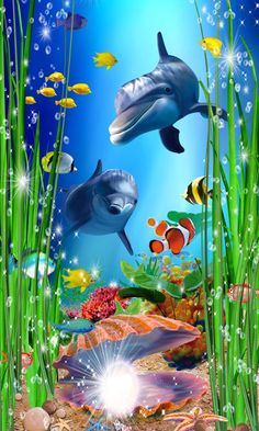 Underwater Wallpaper, Underwater Painting, Ocean Wallpaper, 3d Nature Wallpaper, Dolphin Images, Dolphin Art, Sea Life Art, Sea Art, Beautiful Landscape Wallpaper